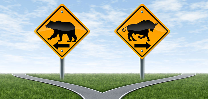 Will This Bull Market Continue In 2015?